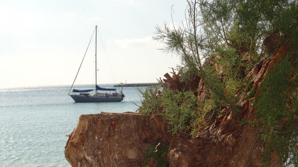 Chenoa auf Samos.