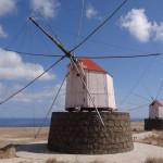 Bei den Windmühlen auf Porto Santo muss sich die ganze Hütte in den Wind drehen_klein