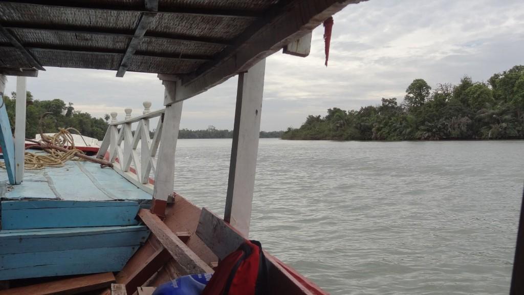 Flussfahrt auf dem Gambia River